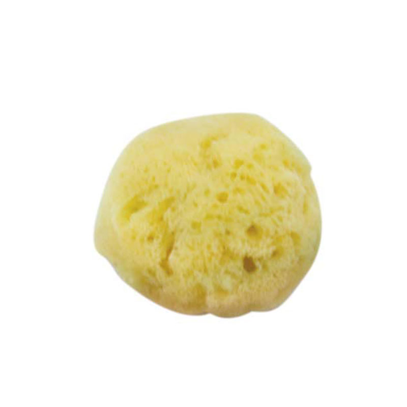 Cosmetic Sea Sponge (Item Code 1049)